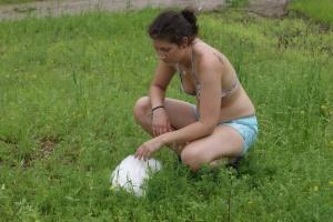 Menneske, dyr og natur