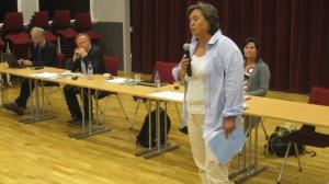 Lesjamøtet 2011 Brekk, Furuberg m.fl.