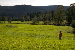 Økt norsk matproduksjon på norske ressurser - over hele landet